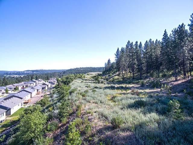 1800 S Canyon Bluff Heights Rd, Spokane, WA 99224 (#202019136) :: Prime Real Estate Group