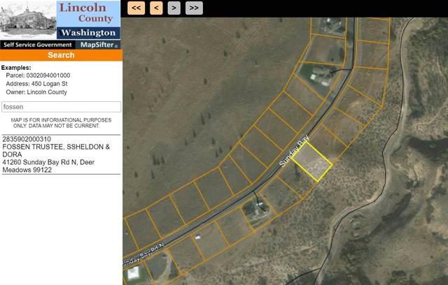 41260 N Sunday Bay Rd, Deer Meadows, WA 99122 (#202019275) :: Alejandro Ventura Real Estate