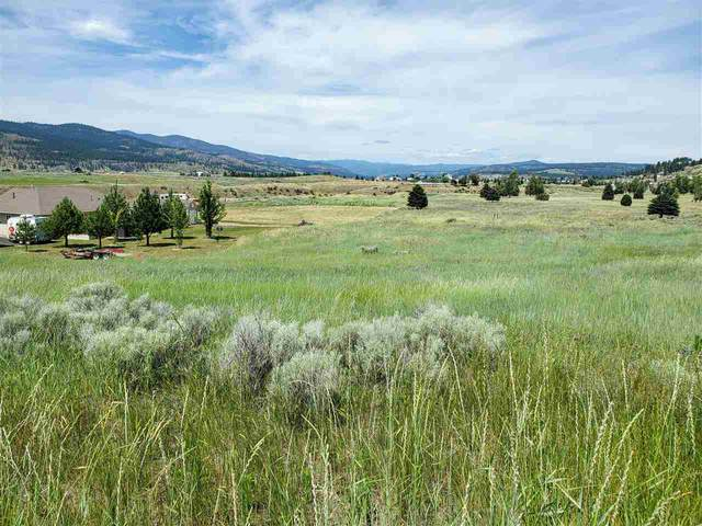 41181 Sunday Bay Rd, Deer Meadows, WA 99122 (#202019448) :: The Spokane Home Guy Group