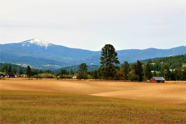 Lot 5 E Peone Rd, Mead, WA 99021 (#202019552) :: The Spokane Home Guy Group