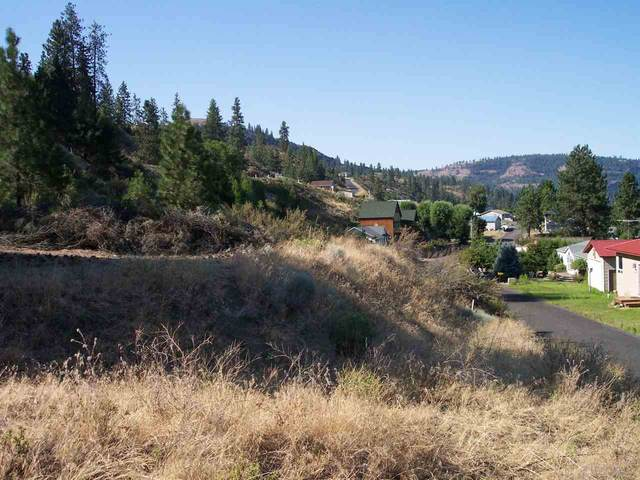 4311 Friday Bay Ln, Seven Bays, WA 99122 (#202019617) :: The Spokane Home Guy Group