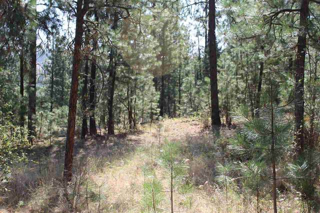 Lot 1 Top Notch Short Plat Ln, Davenport, WA 99122 (#202019875) :: Elizabeth Boykin & Keller Williams Realty