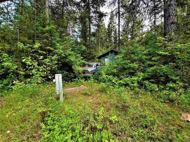 NKN Lookout Rd, Newport, WA 99156 (#202019932) :: The Spokane Home Guy Group