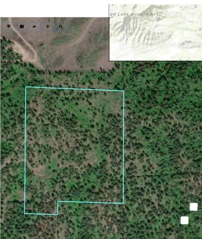 XXX Garden Spot Rd, Loon Lake, WA 99148 (#202019973) :: The Spokane Home Guy Group