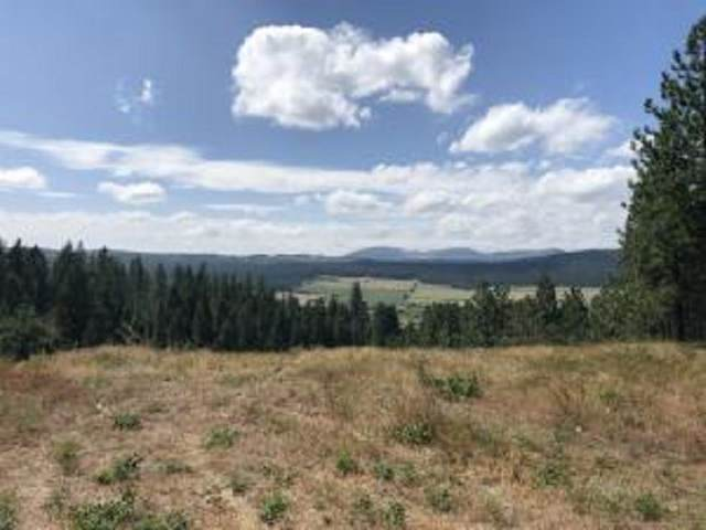 3742 W Jump Off Rd, Valley, WA 99181 (#202020128) :: RMG Real Estate Network