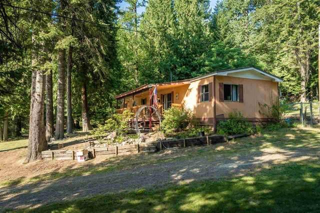1234 Lakeshore Dr, Sagle, ID 83860 (#202020185) :: The Spokane Home Guy Group