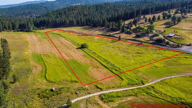 13311 N Forker Rd Physical Addres, Spokane, WA 99217 (#202020194) :: The Synergy Group