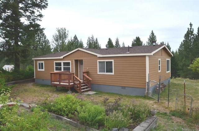 20628 N Mt Carlton Rd, Mead, WA 99021 (#202020292) :: Top Agent Team