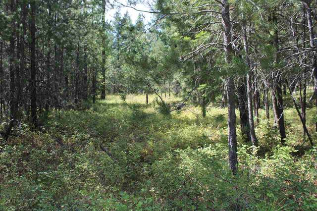 512 E Eloika Rd, Deer Park, WA 99006 (#202020348) :: The Hardie Group