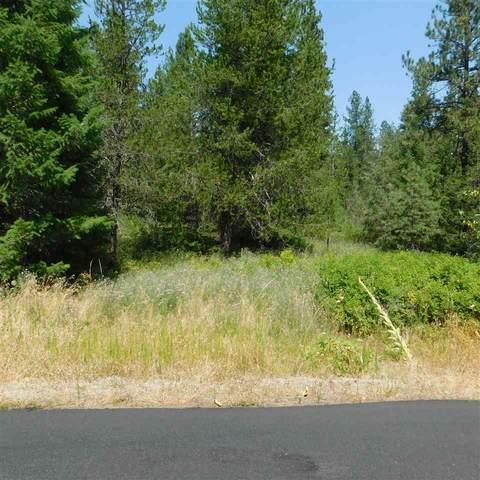 NNN Parkland Ct (Lot 19) Rd, Blanchard, ID 83804 (#202020376) :: The Spokane Home Guy Group