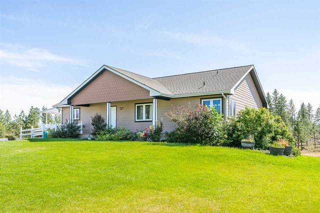 19922 S Smythe Rd, Spangle, WA 99031 (#202020406) :: Top Agent Team