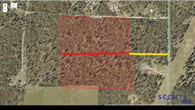 26909 N Hardesty Rd, Chattaroy, WA 99003 (#202020407) :: Prime Real Estate Group