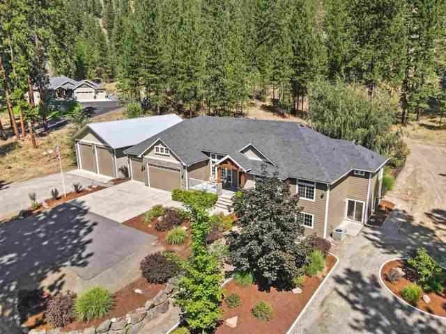15102 N River Park Ln, Nine Mile Falls, WA 99026 (#202020539) :: The Spokane Home Guy Group