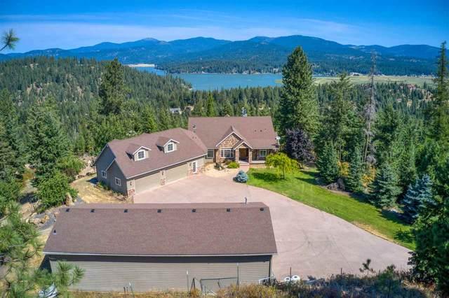 10011 N Elk Ln, Newman Lake, WA 99025 (#202020825) :: Elizabeth Boykin & Keller Williams Realty