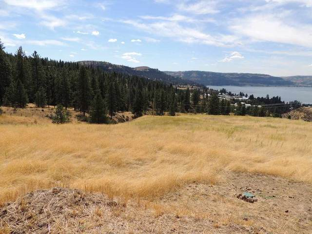 40559 Miles Creston Rd N Lot 2, Davenport, WA 99122 (#202020923) :: Prime Real Estate Group