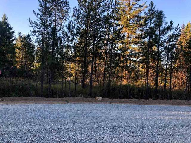 000 Lacy Ln #2, Loon Lake, WA 99148 (#202021051) :: The Synergy Group