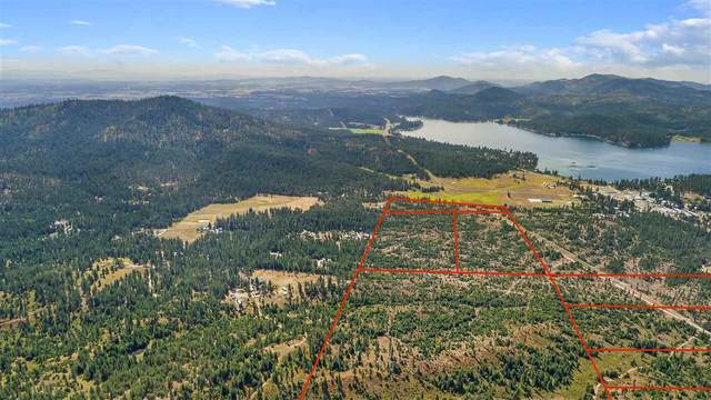 0 E Garden Spot Rd Lot 3, Loon Lake, WA 99148 (#202021082) :: Freedom Real Estate Group