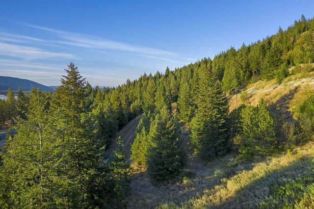 NE4 NW4 E Of Hwy 25 Hwy, Kettle Falls, WA 99141 (#202021304) :: Prime Real Estate Group
