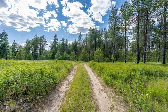 10700 E Whispering Pines Ln, Elk, WA 99009 (#202021323) :: Prime Real Estate Group