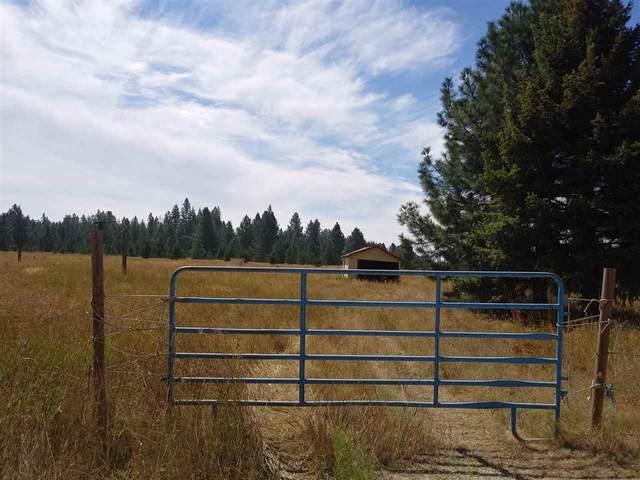 12812 E Bridges Rd, Elk, WA 99009 (#202021390) :: Prime Real Estate Group