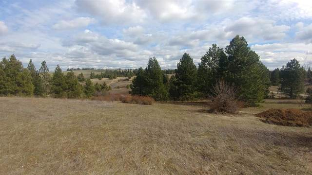 TBD W Orchard Terrace Dr Dr, Cheney, WA 99004 (#202021403) :: Prime Real Estate Group
