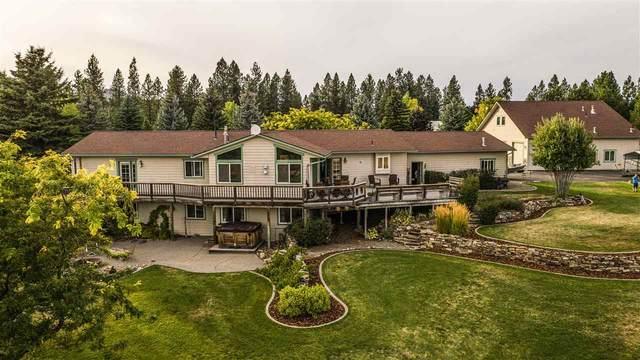 8804 N Martinson Ln, Newman Lake, WA 99025 (#202021412) :: Elizabeth Boykin & Keller Williams Realty