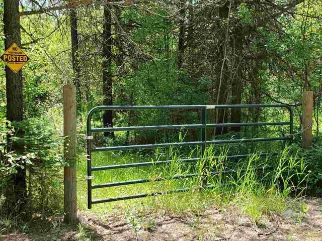 4450 M Buck Creek Rd, Loon Lake, WA 99148 (#202021424) :: The Spokane Home Guy Group