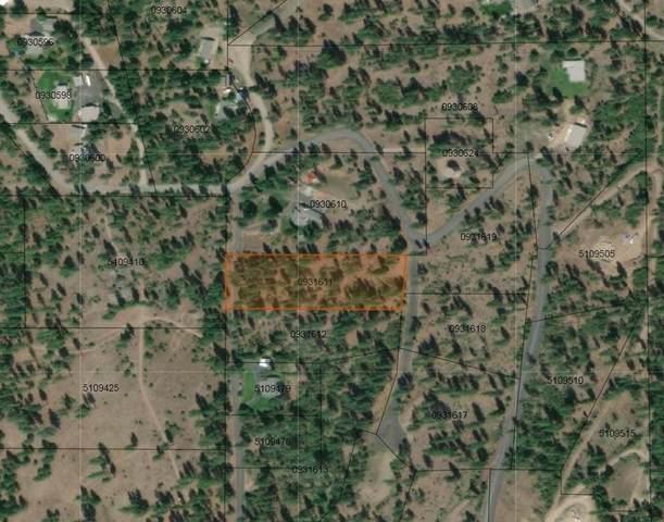 XX Fir Drive Way, Nine Mile Falls, WA 99026 (#202021505) :: Prime Real Estate Group
