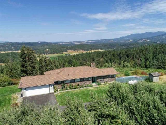 10229 E Day Mount Spokane Rd, Mead, WA 99021 (#202021706) :: Elizabeth Boykin & Keller Williams Realty
