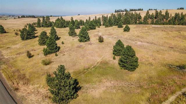 NNA Orchard Heights (Lt 18 Blk 109) #14242.0181, Cheney, WA 99004 (#202021710) :: Prime Real Estate Group