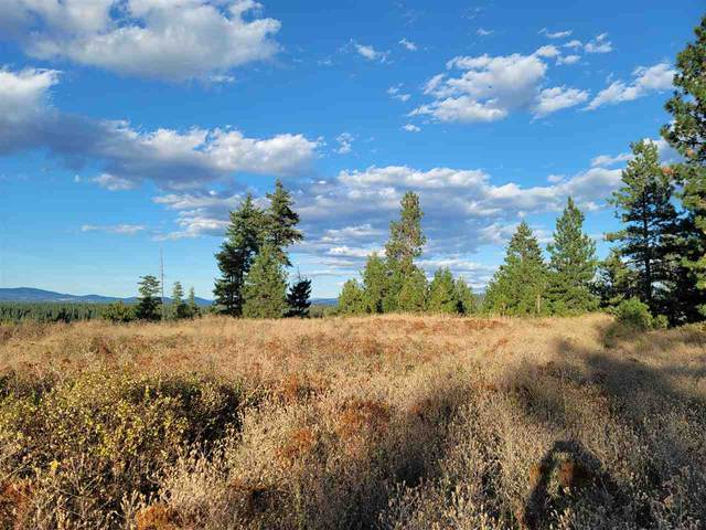 Lot 18 N Vista Point Ln, Deer Park, WA 99006 (#202022074) :: Prime Real Estate Group