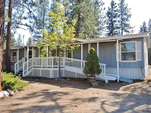 6413 Lakeview Dr, Nine Mile Falls, WA 99026 (#202022202) :: The Synergy Group