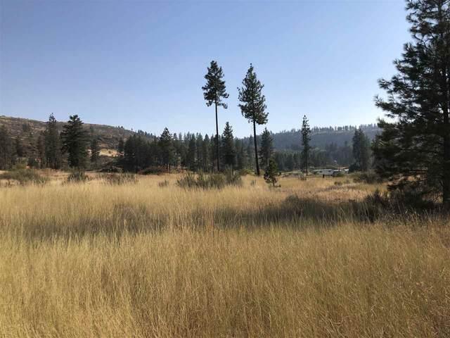 35475 Sr 231 Hwy, Reardan, WA 99029 (#202022245) :: The Spokane Home Guy Group