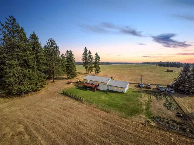 42702 N Sherman Rd, Deer Park, WA 99006 (#202022289) :: Prime Real Estate Group
