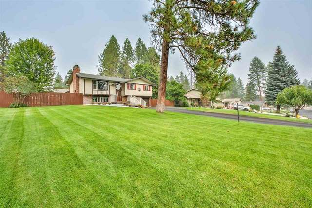 4721 E Lane Park Rd, Mead, WA 99021 (#202022431) :: The Hardie Group