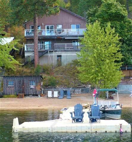 4661 E Deer Lake Rd Aka Totem Lane, Loon Lake, WA 99148 (#202022445) :: The Spokane Home Guy Group