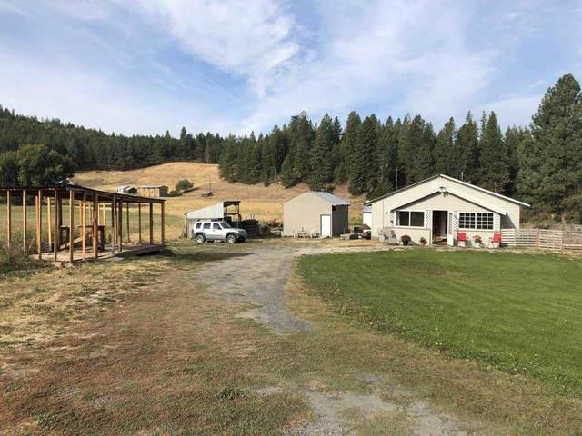 4402 Skands Rd, Valley, WA 99109 (#202022563) :: The Hardie Group