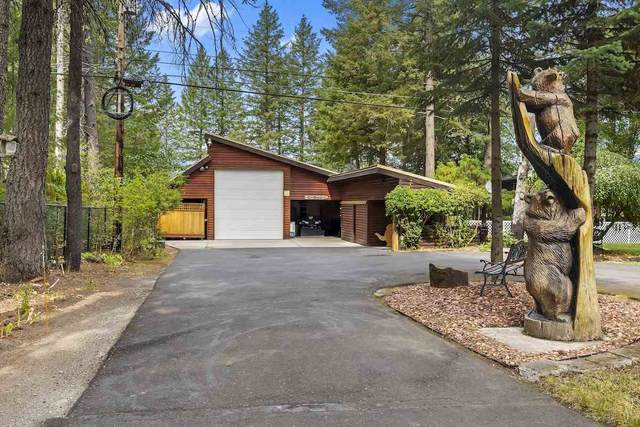 851 Southshore Diamond Lake Rd, Newport, WA 99156 (#202022577) :: Prime Real Estate Group