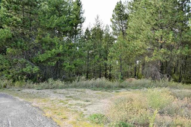 Lot 8 Lakeside Dr, Newport, WA 99156 (#202022587) :: Prime Real Estate Group