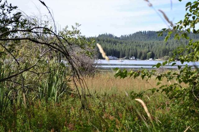 Lot 7 Lakeside Dr, Newport, WA 99156 (#202022588) :: Prime Real Estate Group