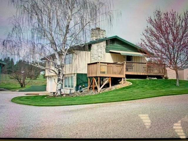 19515 N Hatch Rd, Colbert, WA 99005 (#202022701) :: The Spokane Home Guy Group