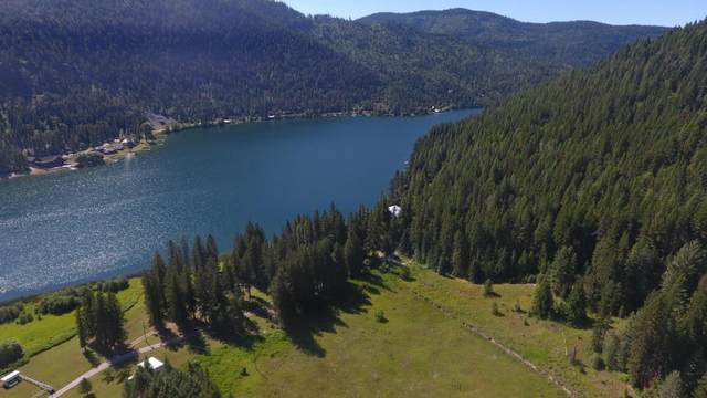 3016 Deep Lake North Shore Way, Colville, WA 99114 (#202022828) :: The Synergy Group