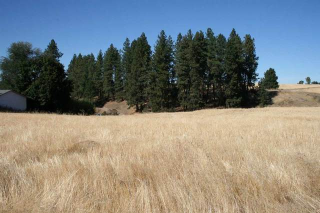 7827 E Bigelow Gulch Rd, Spokane, WA 99217 (#202022850) :: Prime Real Estate Group