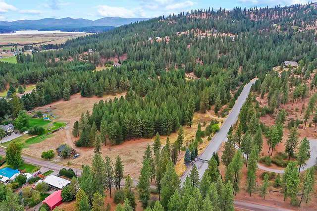26727 E Moffat Rd, Newman Lake, WA 99025 (#202022992) :: RMG Real Estate Network