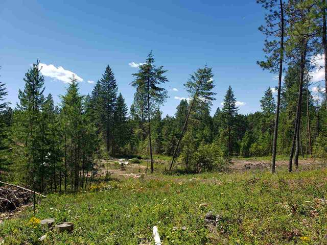 13011 E Nelson Rd, Elk, WA 99009 (#202023200) :: Prime Real Estate Group