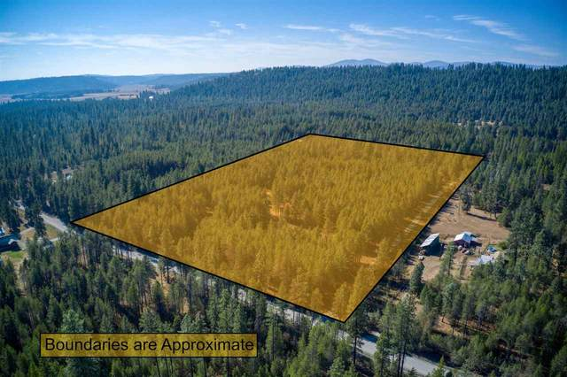 4497 Luther Rd, Springdale, WA 99173 (#202023254) :: Top Agent Team