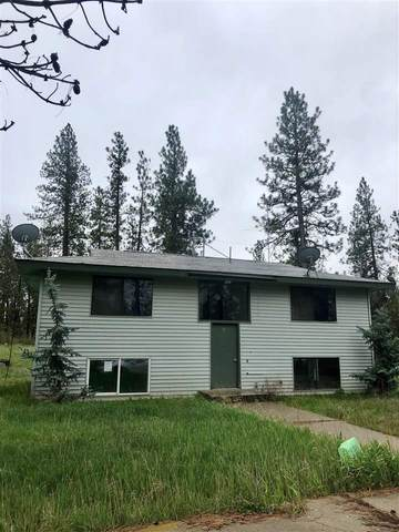 22125 W Mcfarlane Rd, Medical Lake, WA 99022 (#202023347) :: Elizabeth Boykin & Keller Williams Realty