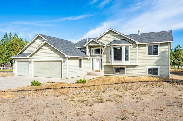 6244 N Pearson Dr, Nine Mile Falls, WA 99026 (#202023460) :: Parrish Real Estate Group LLC