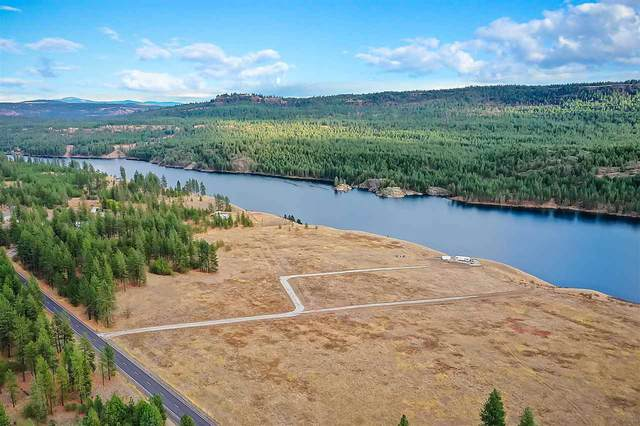 7295B Highway 291, Tumtum, WA 99034 (#202023561) :: Prime Real Estate Group