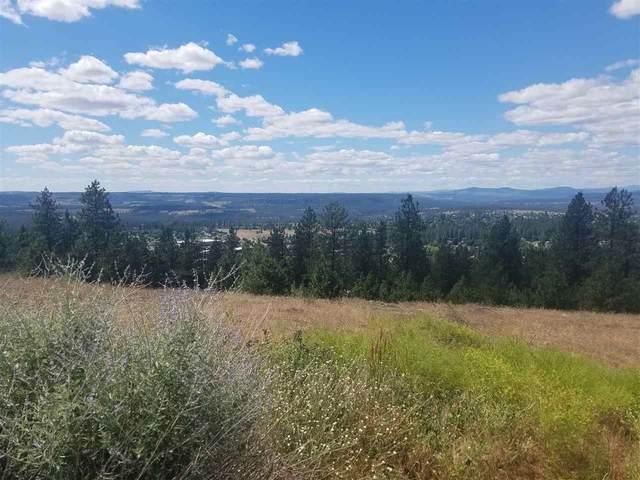 4310 W Reese Ct, Spokane, WA 99208 (#202023641) :: Prime Real Estate Group